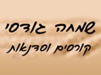 שמחה גודסי - קורסים וסדנאות
